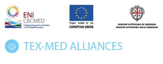 TEX-MED Alliances Project